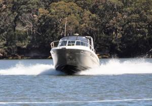 Sea Ray 315/290 Amberjack