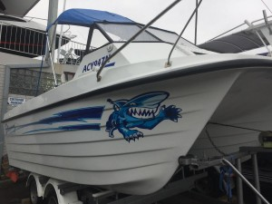 1988 Shark Cat 560 Sportsman