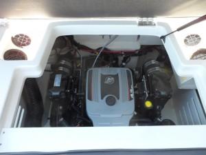 Sea Ray 19 SPX Bow Rider