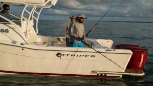 Striper 2601