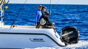 BOAT SHARE: Boston Whaler 345 Conquest