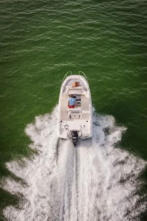Boston Whaler 210 Dauntless