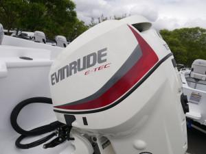 QUINTREX 530 FREESTYLER - BOW RIDER