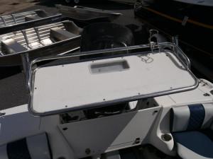 SAVAGE SURVEYOR 550