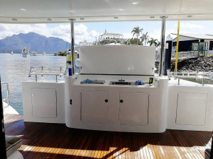 2010 Dynamic 52 Power Catamaran