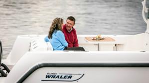 Boston Whaler 315 Pilothouse