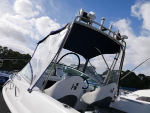 Haines Hunter 575 ProFish