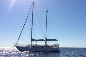 2010 Roberts 38 Offshore