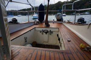 Bluey Williams Timber 34